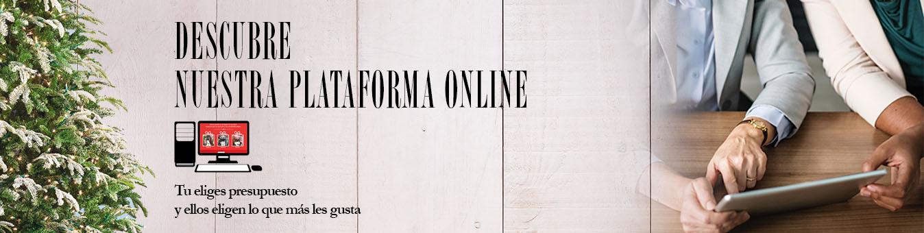 Descubre nuestra plataforma online